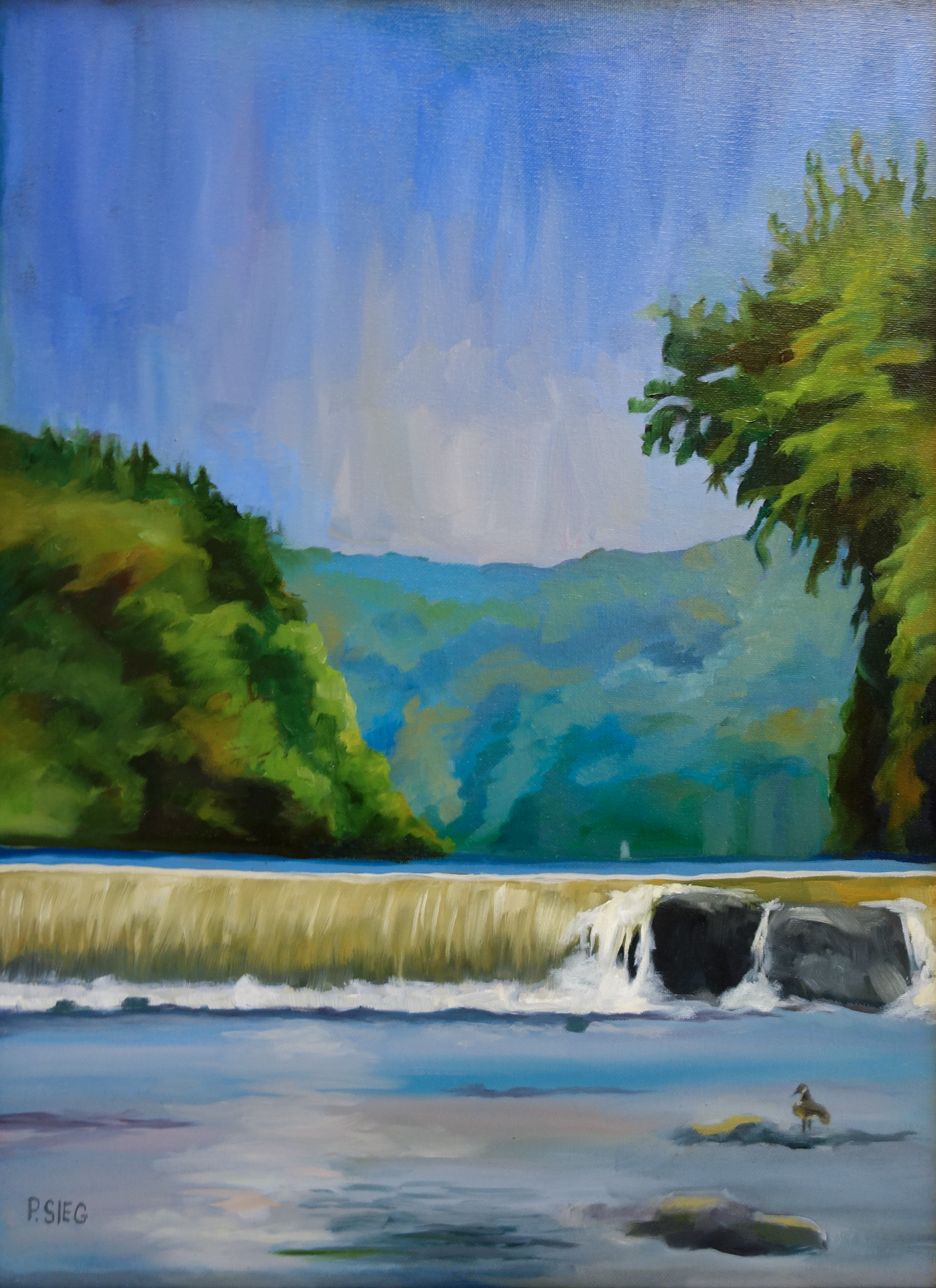 "Dam at Great Falls Park   18"" x 24"", oil on canvas For sale,  contact the artist"