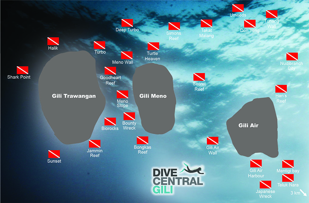 There are over 20 dive sites that we regularly visit – each is stunning in a different way. If you ask each Instructor which is their favourite dive site, it's likely they will give you different answers.