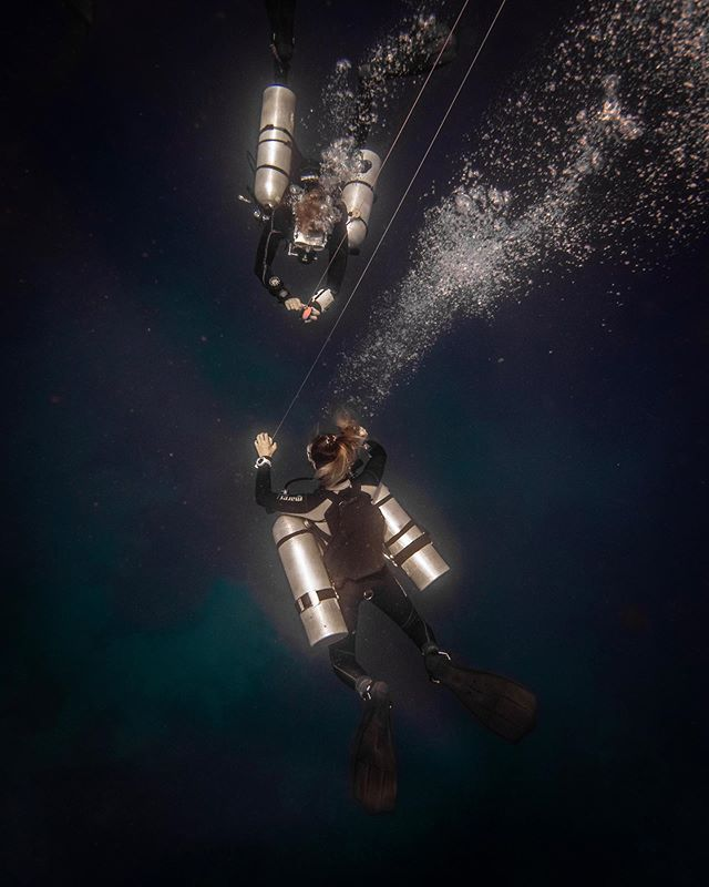 Happy PADI Women's Dive Day 🙌🏻 What better way to celebrate than a sidemount dive to one of our favourite sites, Simon's Reef? Look at that visibility 😍⁣ ⁣ Check out our stories for more of what we got up to today!⁣ ⁣⁣ 📷 @harley.underwater⁣⁣ 📍 Simon's Reef⁣ ⁣⁣ #padiwomensdiveday #divecentralgili #everydiveisafundive #girlsthatscuba #girlsthattechdive #instadive #sidemount #sidemountdiver #scubadivinglife #travelbali #gilitravel #gilitraveller #scubadivingaddicts #gilitrawangan #giliislands #gilimeno #diveindonesia  #scubaworld #divemag #divinglife #paditv #wearepadi #oceanholiclife⁣⁣ ⁣