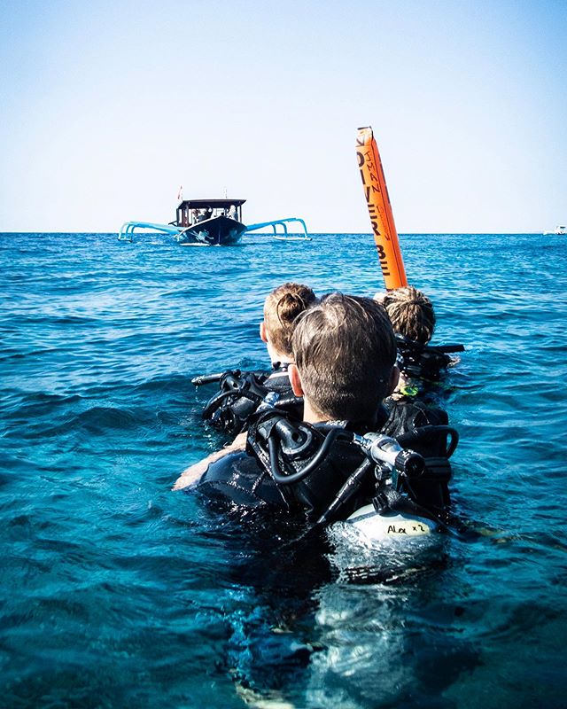 Taxi, please 👋🏻🚖 Every dive here is a drift dive, so our wonderful boat crew keep close watch for our SMBs to see where we ascend and safely bring us all back to the boat 🤙🏻   Did you know we offer a speciality course in Drift Diving? We can teach you all you need to know about currents, try out a different form of entry, and how to send up an SMB for yourself 💦 Send us a message to find out more 🙌🏻  📷 @harley.underwater  📍 Gili Trawangan  #divecentralgili #everydiveisafundive #driftdiving #driftdive #surfaceinterval #discoverscuba #discoverscubadiving #instadive #trydive #padiopenwater #trydiving #scubadivinglife #travelbali #gilitravel #gilitraveller #scubadivingaddicts #gilitrawangan #giliislands #gilimeno #diveindonesia  #scubaworld #divemag #divinglife #paditv #wearepadi #oceanholiclife #uniladadventure
