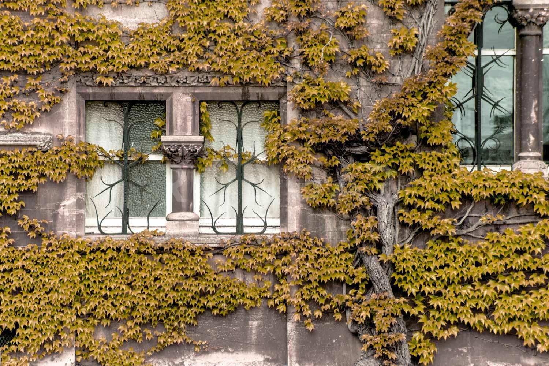 Web_Ciudades_Oxford_018.jpg
