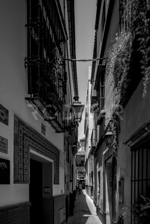Web_Ciudades_Sevilla_008.jpg