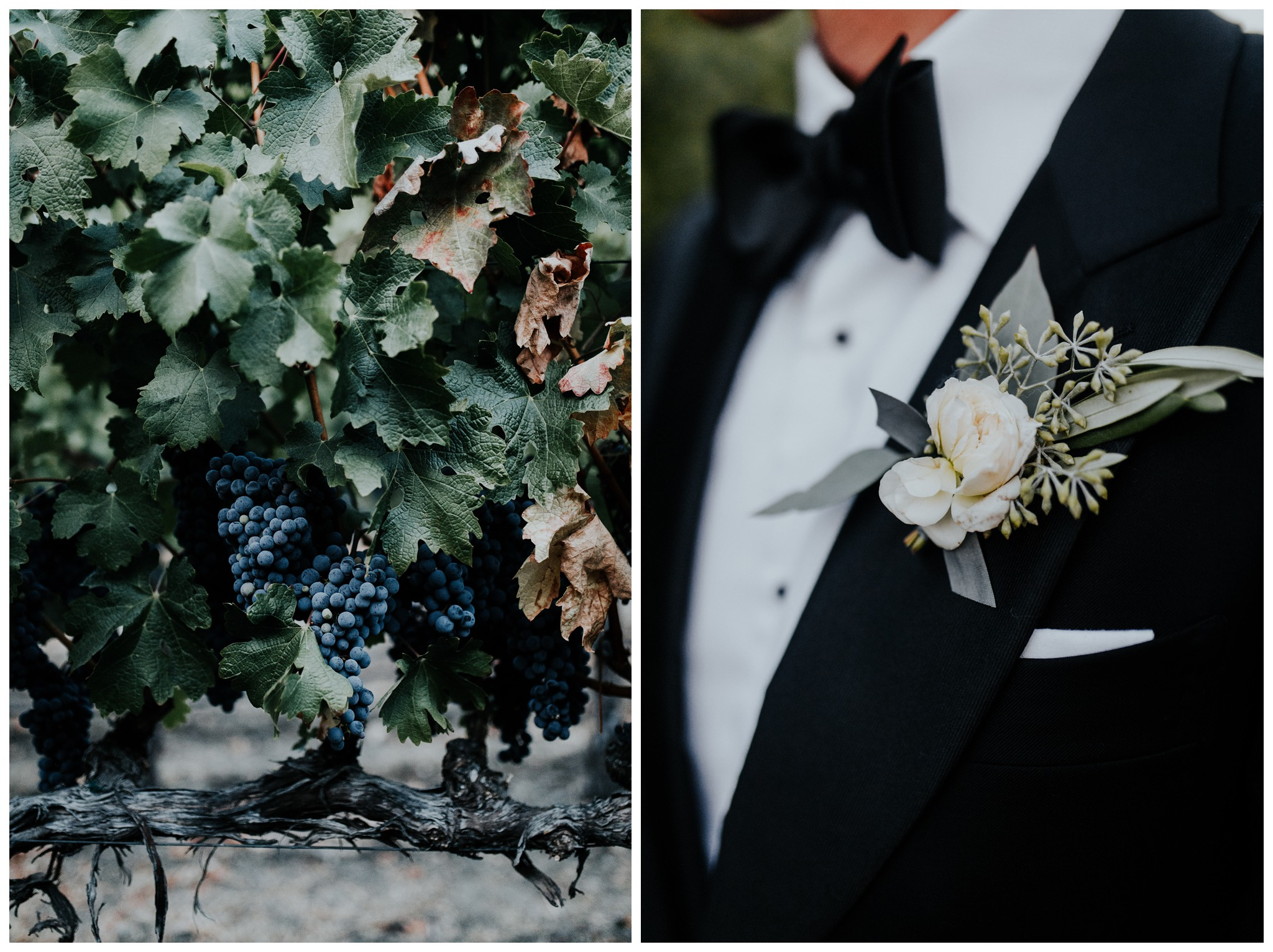 The Vintage Estates - Napa Valley - Yountville CA - Madeleine Frost Weddings-2169.jpg