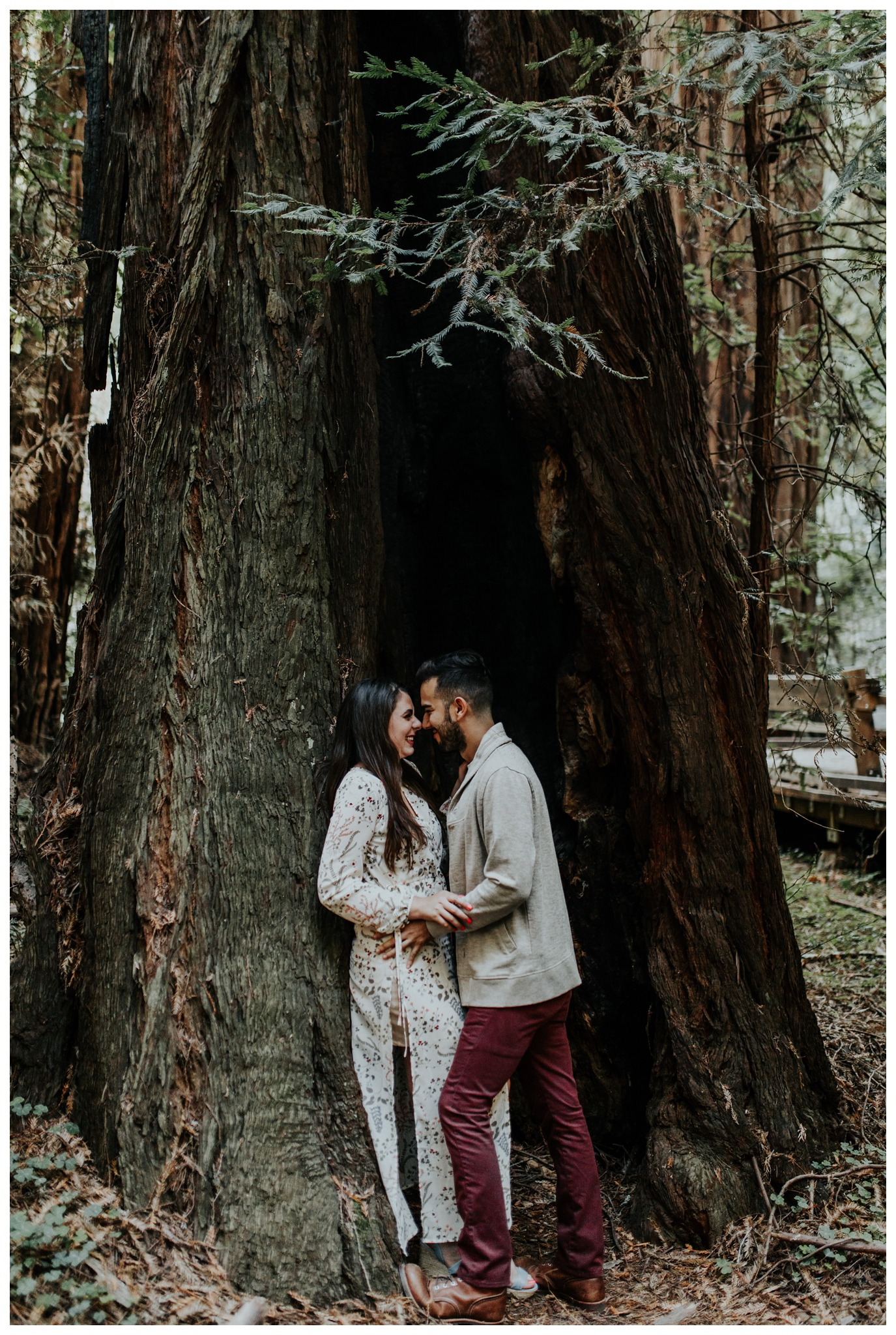 San Francisco - Muir Woods - China Beach Engagement Session -2012.jpg