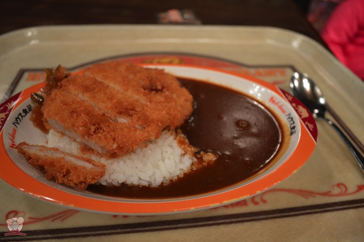 Pork Cutlet Curry with Rice