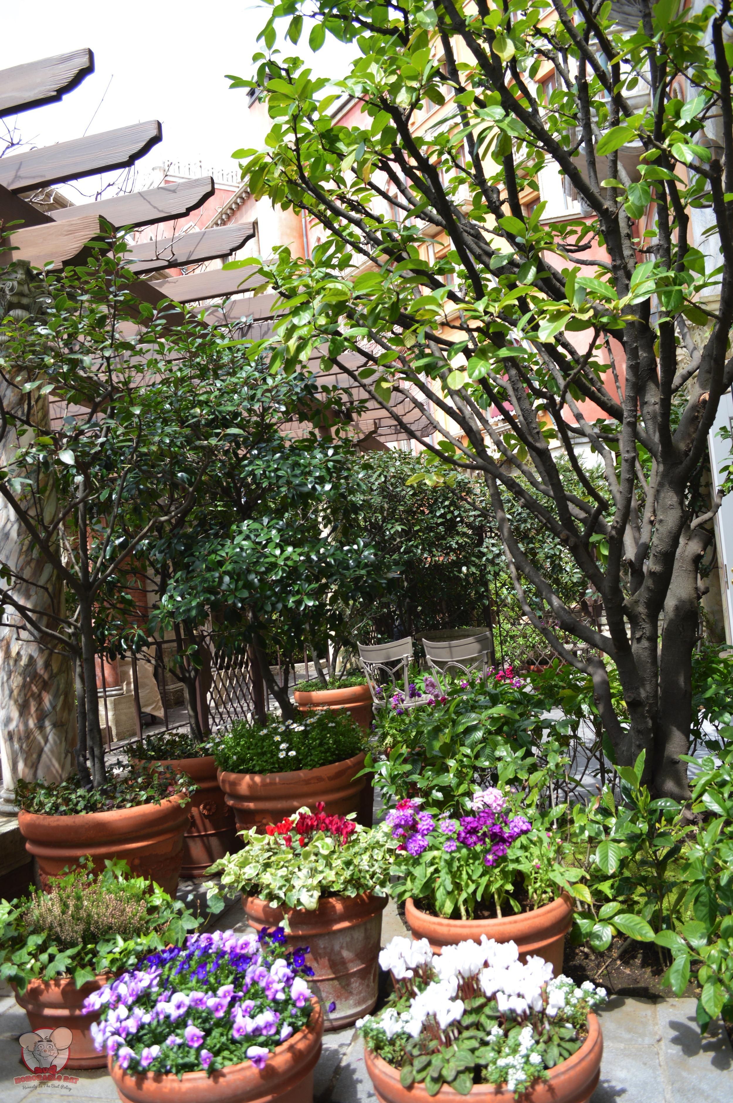 Garden at the patio