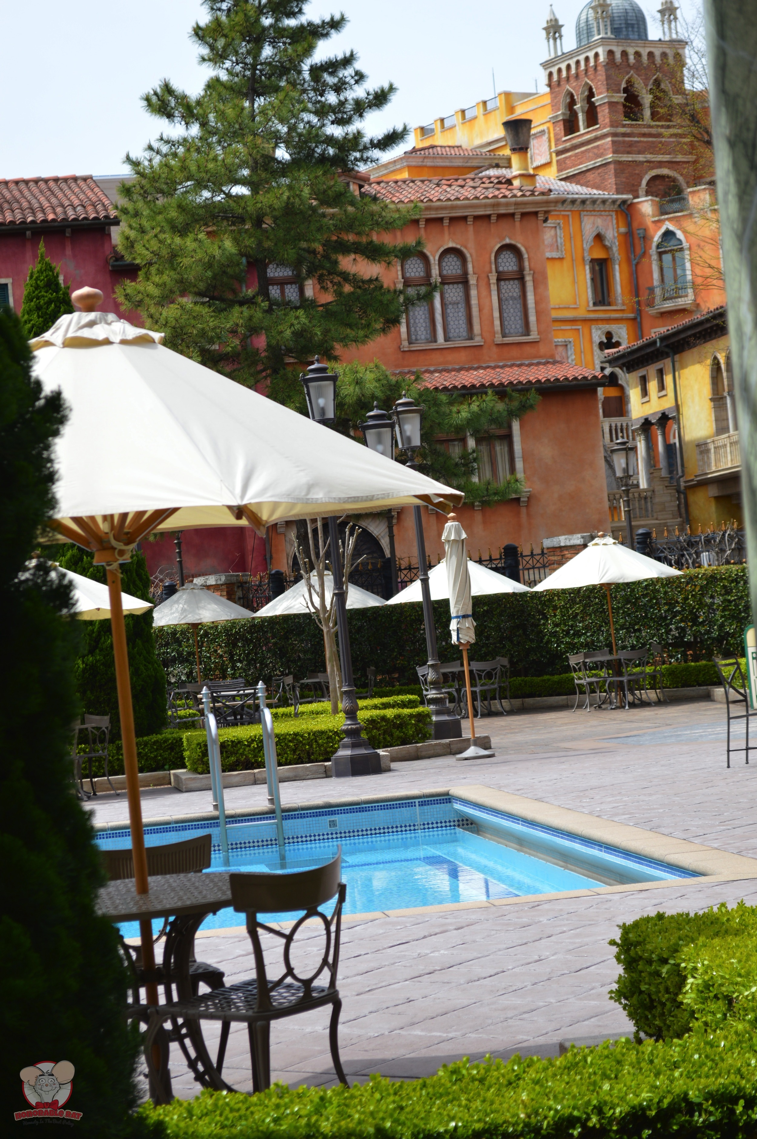 View of the pool from the patio