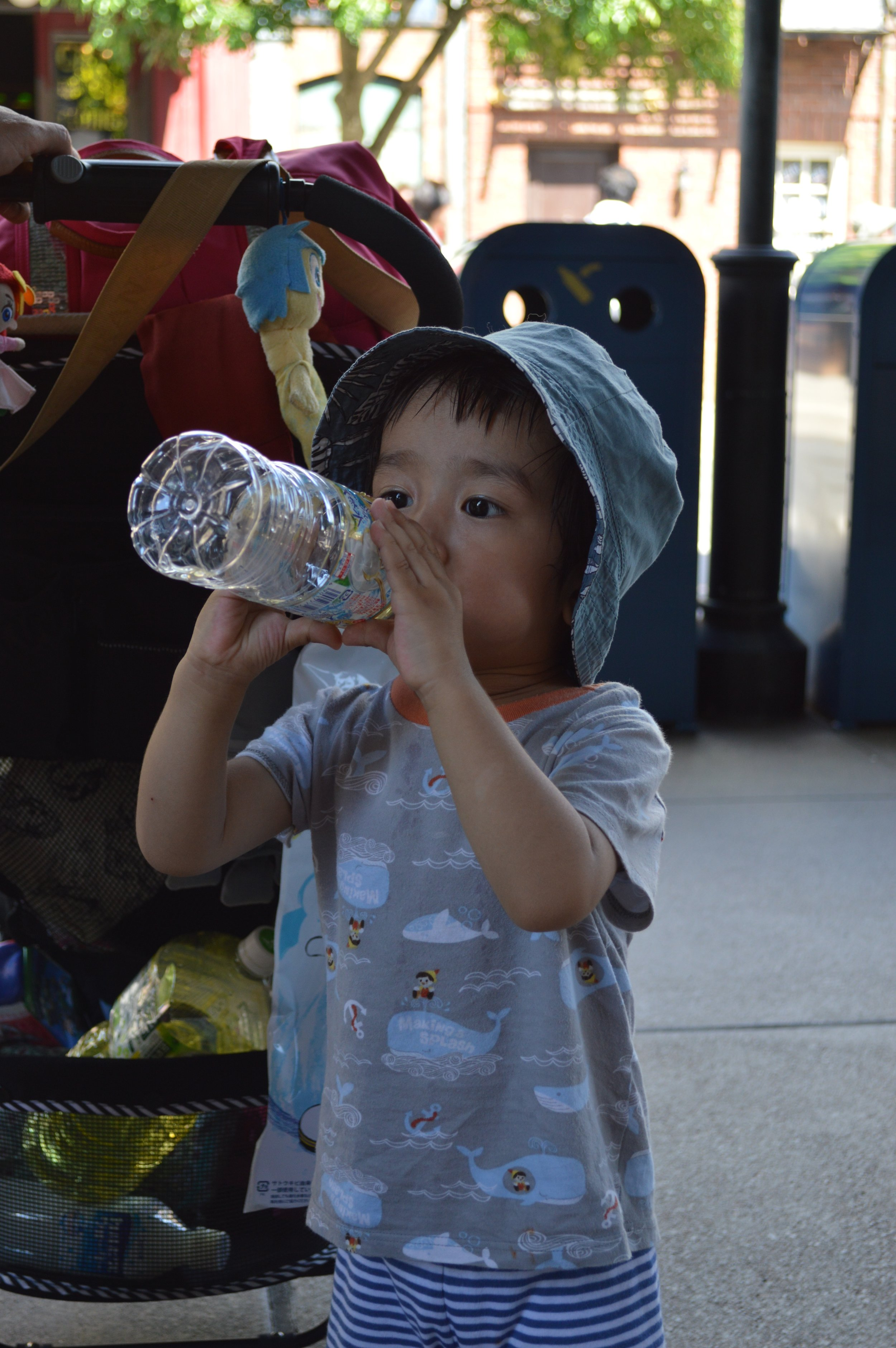 Baby Haku getting hydrated