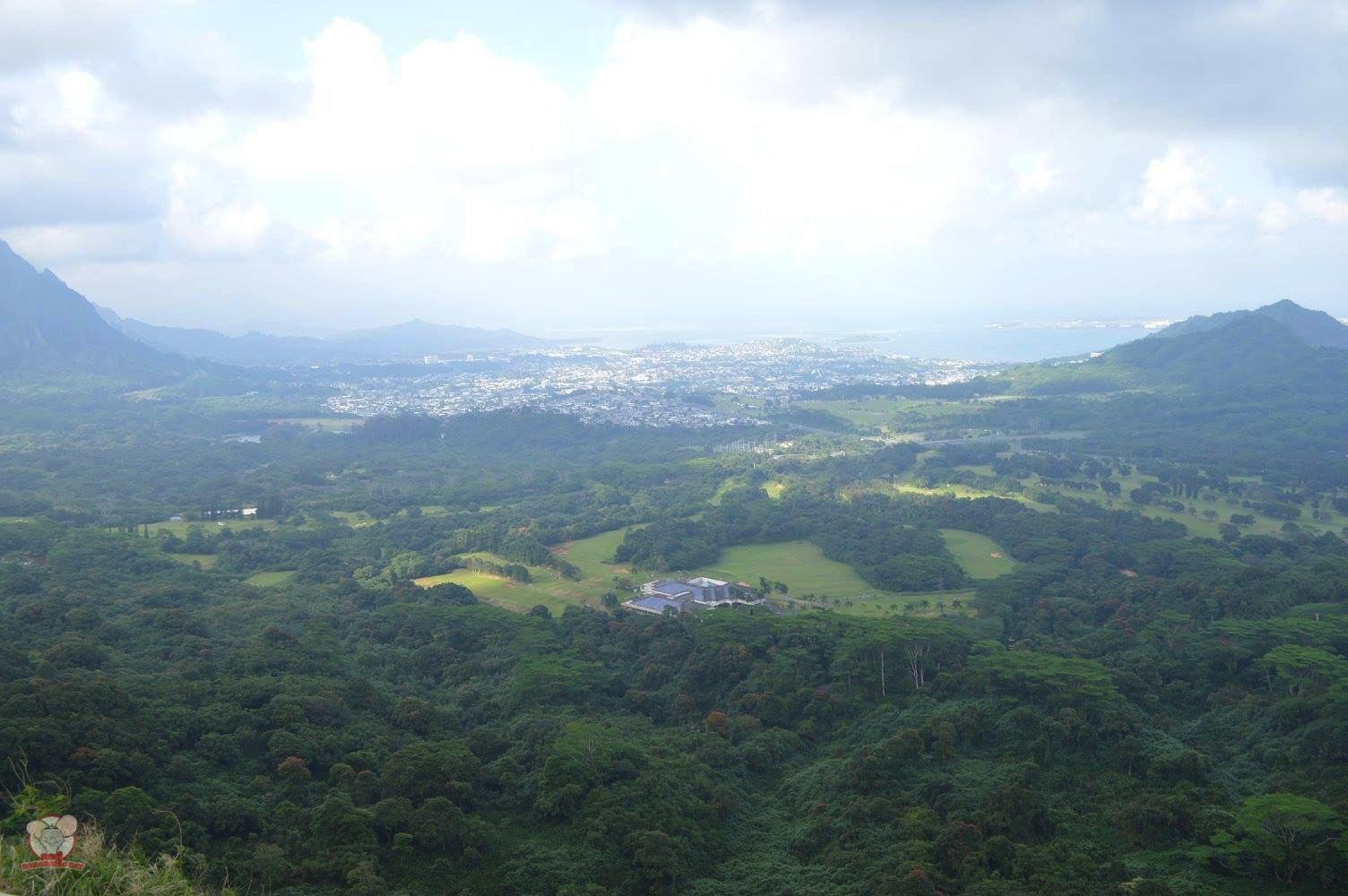 The view from Pali Lookout