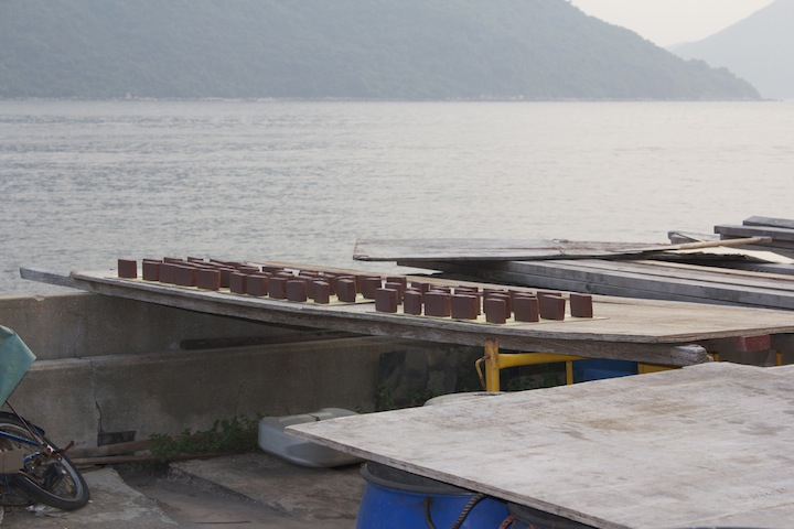 Shrimp paste, Tai O's main industry, drying in the sun.