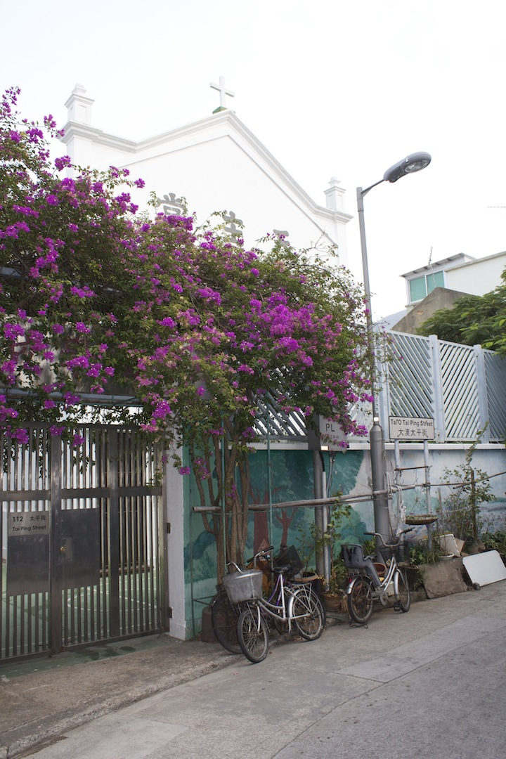 Tropical blooms and bikes