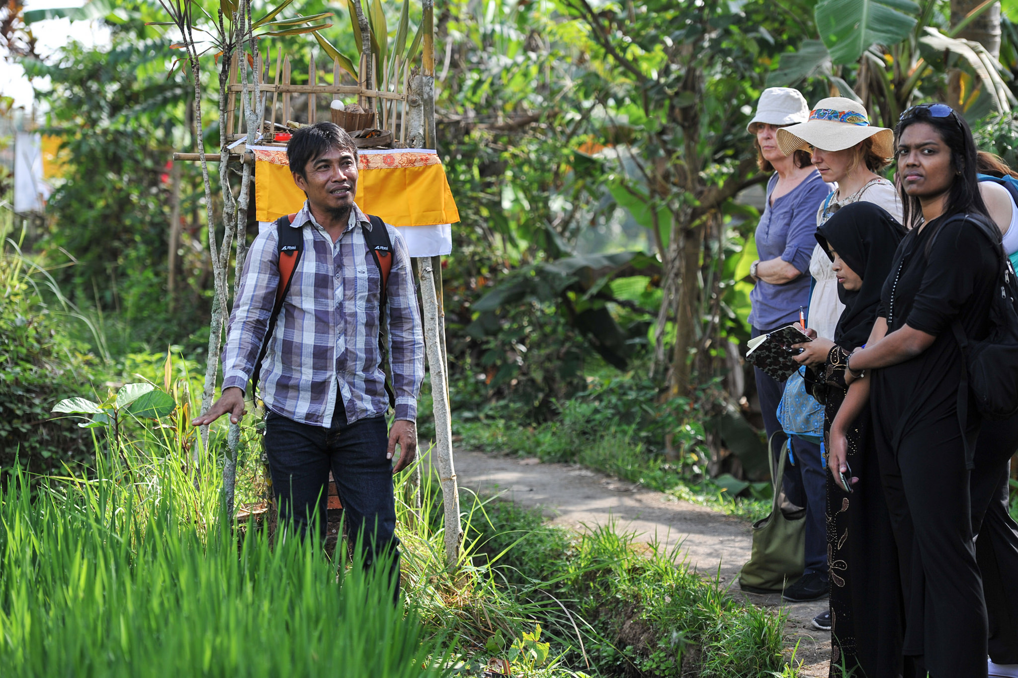 Ubud Writers & Readers Festival    Tour Guide Westie takes us for a walk, Jalan Jalan, through the rice fields, points out the local herbs and tells us how they are used for both cooking and healing. Image Credit: Matt Oldfield. Jalan Jalan.