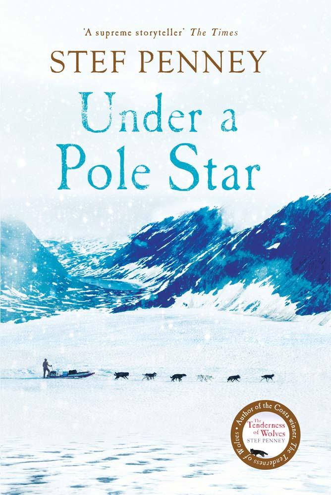 Under A Pole Star.jpg