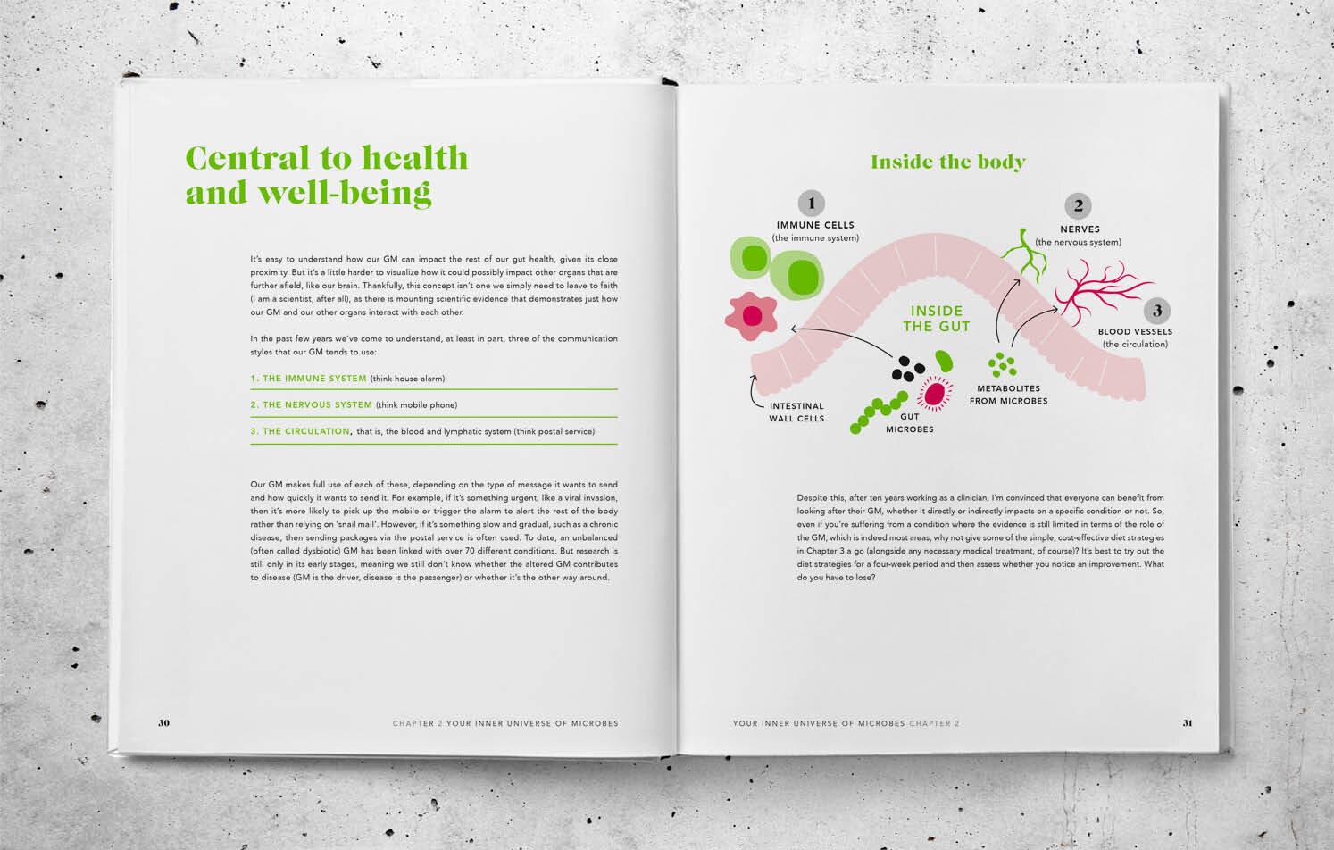 Gut Health2.jpg