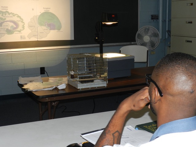 Emory Songbirds visit the prison classroom