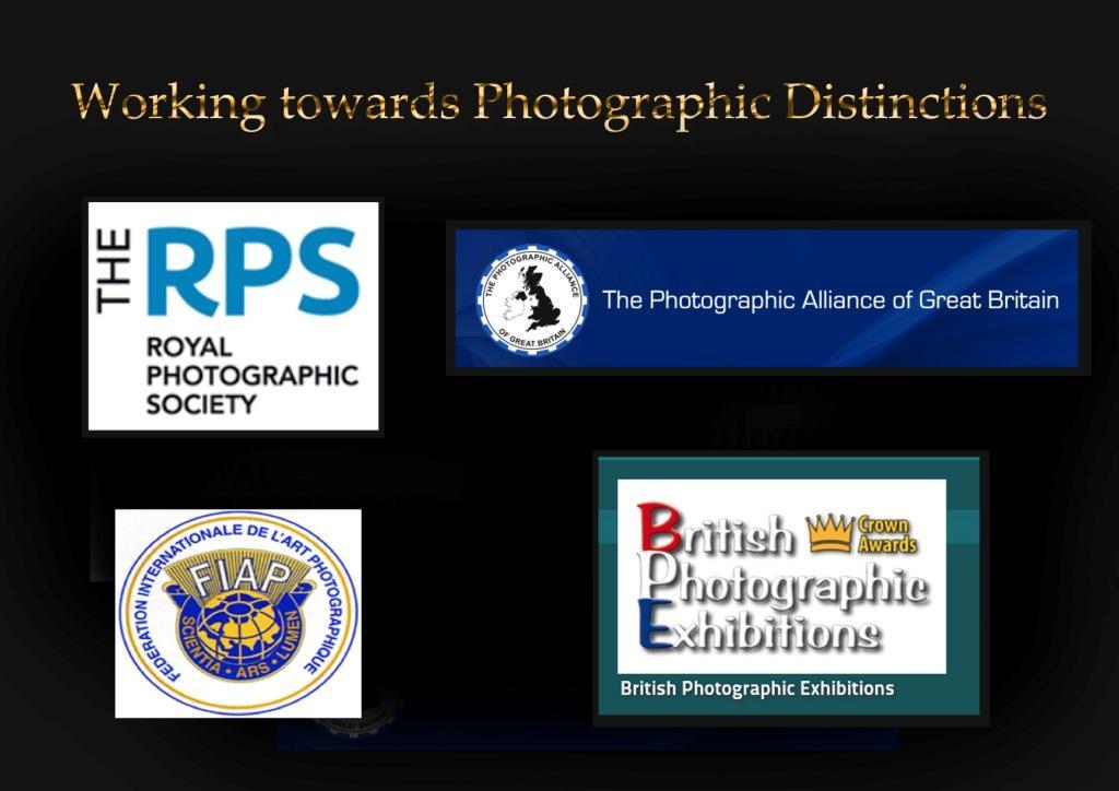 Title page - Copy.jpg