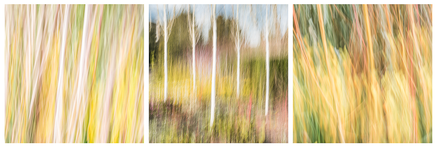Artistic Spring Garden_Peter Bayliss
