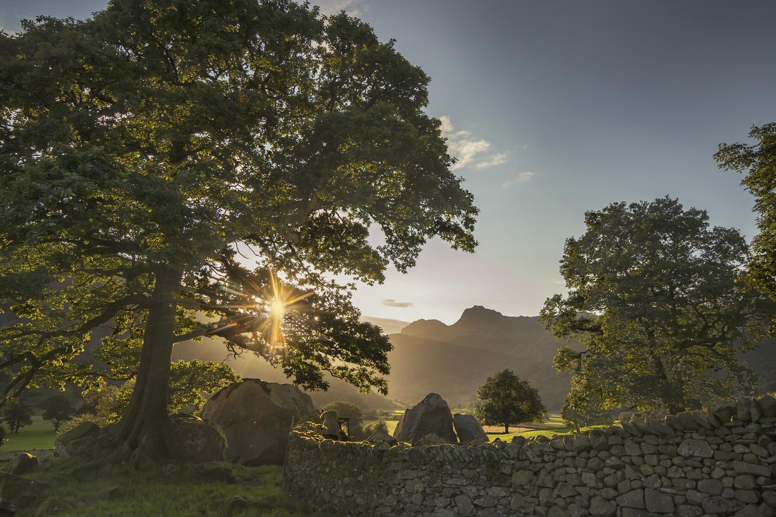 Langdale Boulders:: Alison Taylor