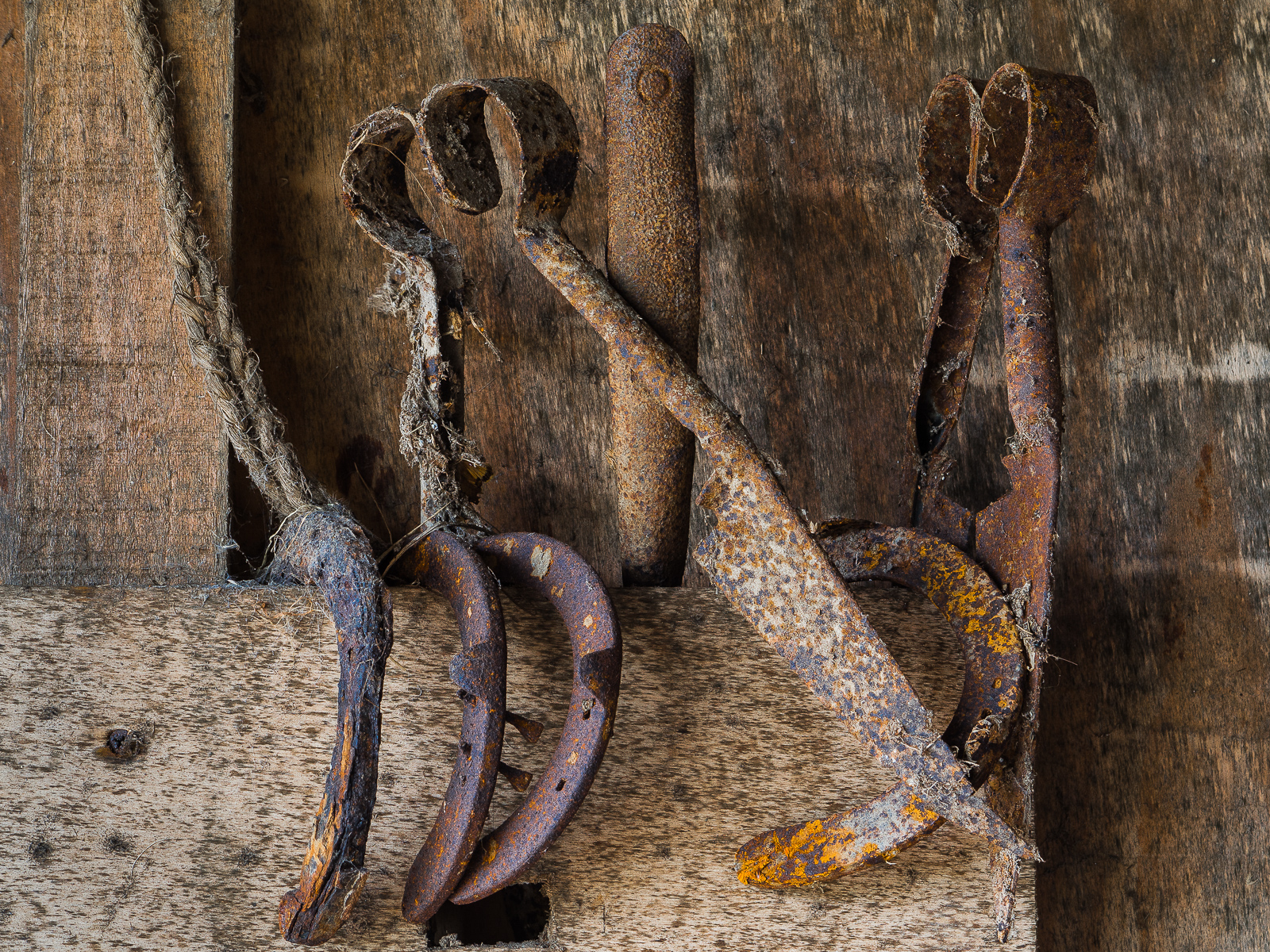 Tools in the old barn by Mary Chatburn