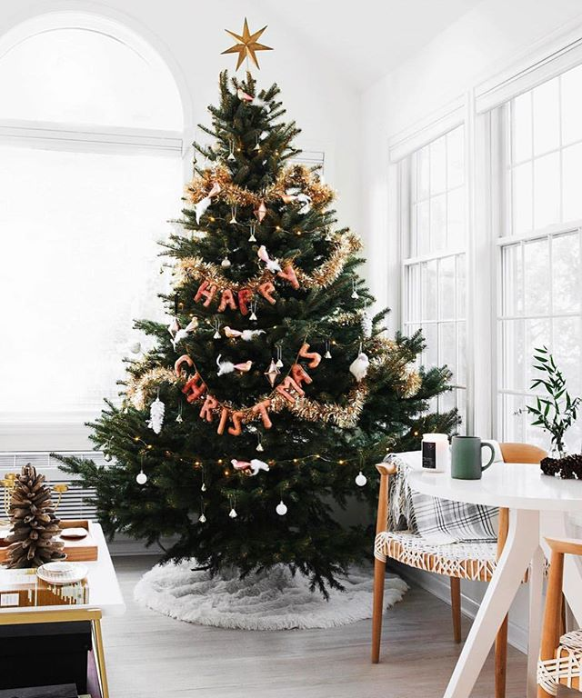 Now that thanksgiving is over it's Christmas tree time! 😍🎄📷: @jillianguyette