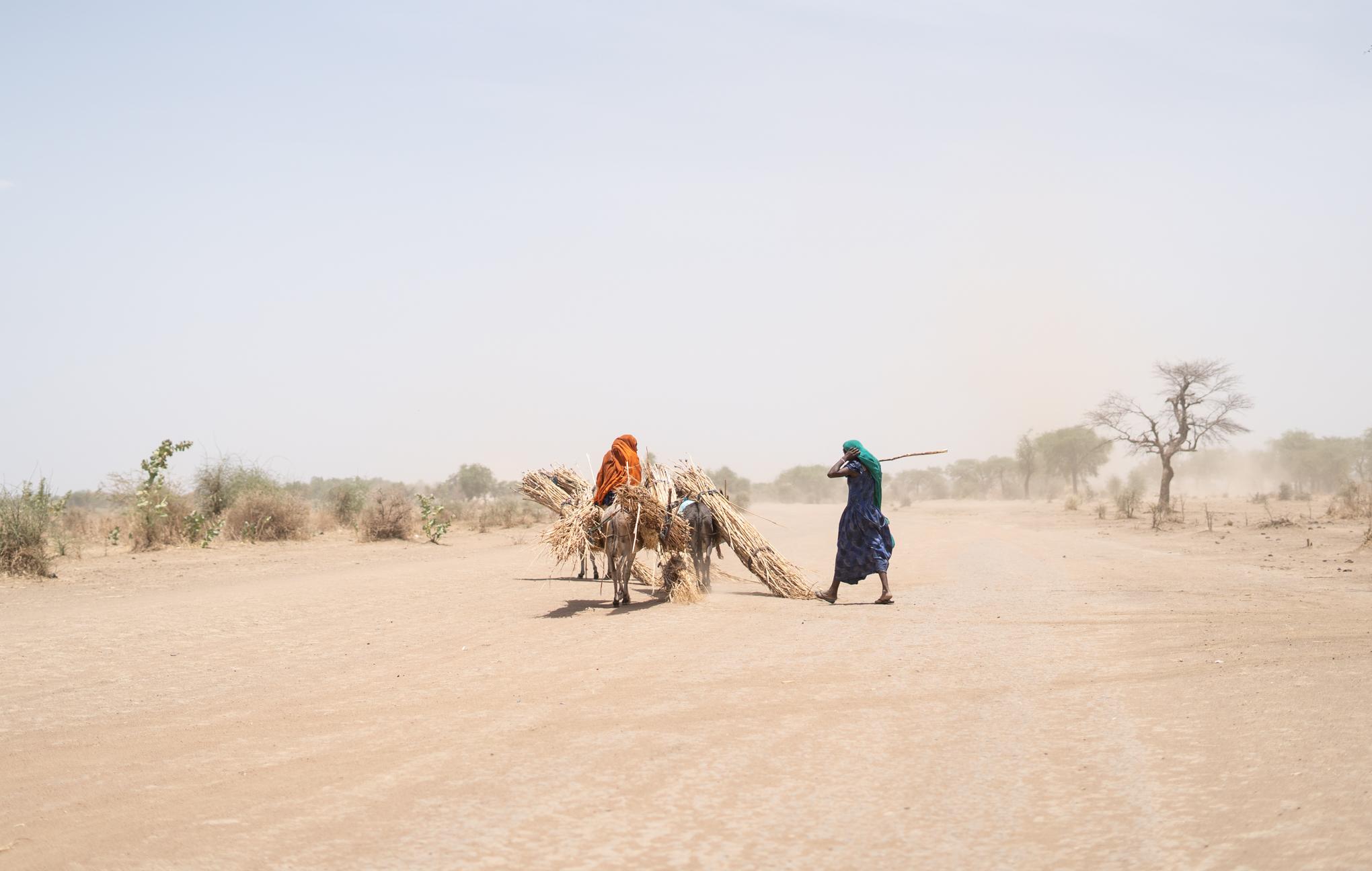 MSF Chad - Day 8 -100_20190409.jpg