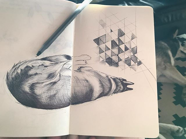 Dogpill, cures most ailments 🐺💊 #sketchbook #drawing #ballpointpen #illustration