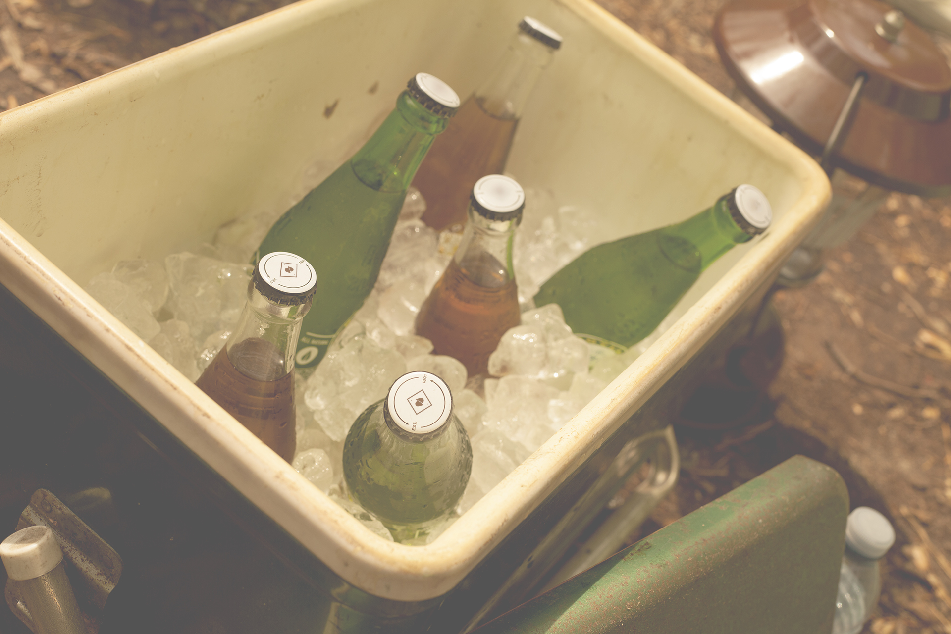 12_Bottles.jpg
