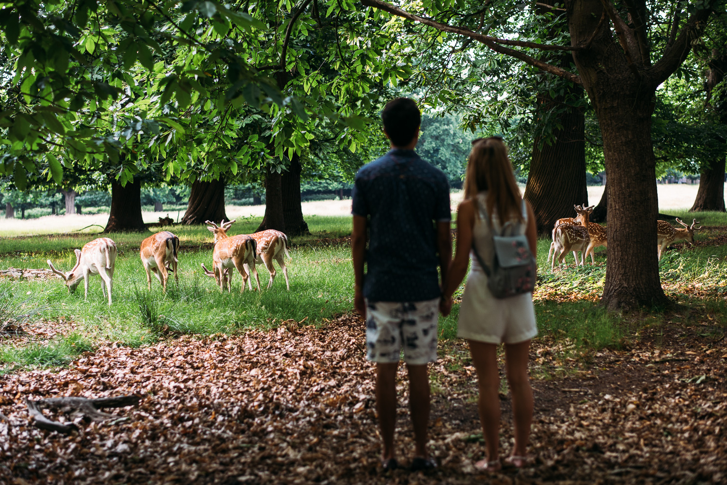 summery-richmond-park-engagement-shoot-76.jpg