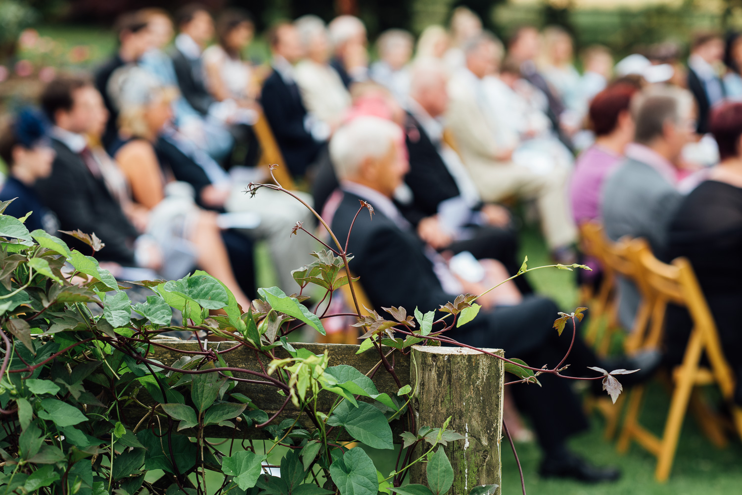 back-garden-wedding-34.jpg