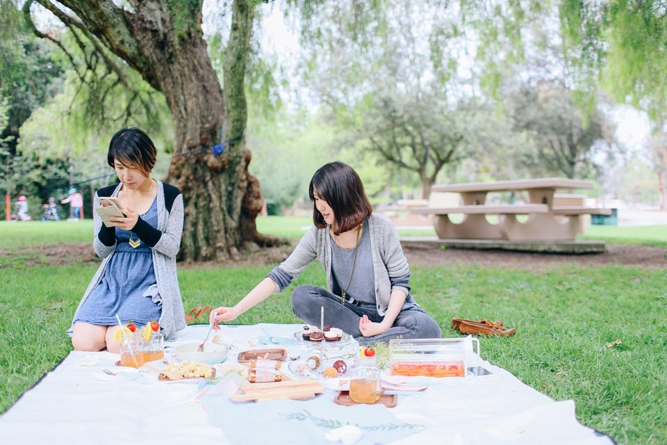 picnic_40