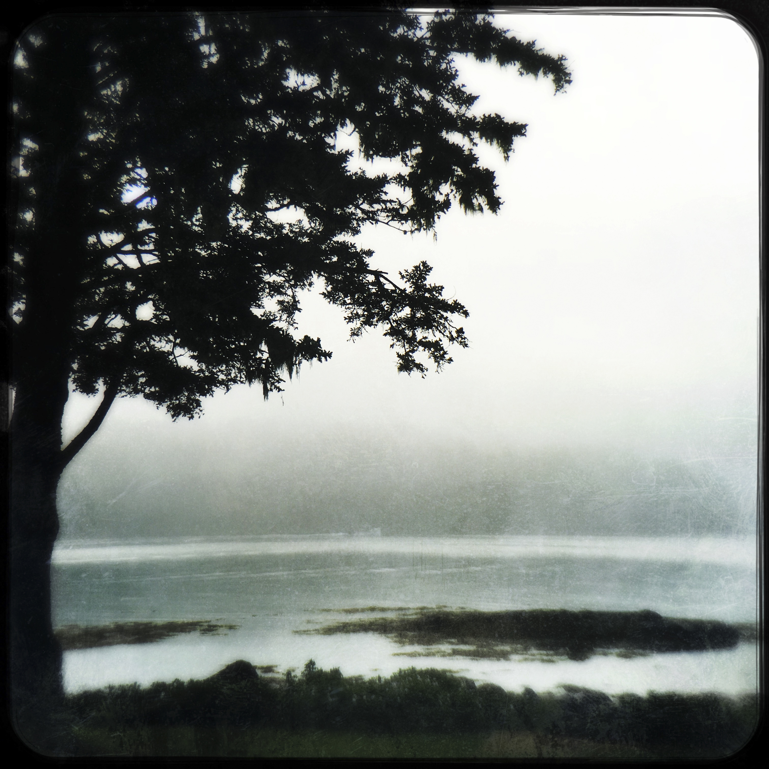 This is Maine. This is Rain.