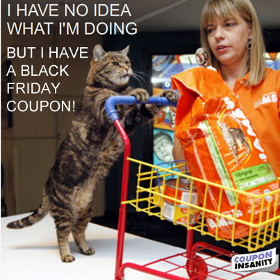 Cat-with-black-friday-coupon.jpg
