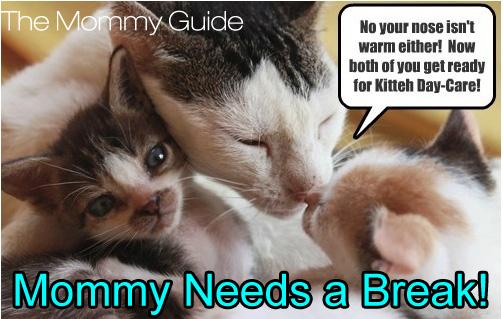 MNAB_cat-with-kittens.jpg