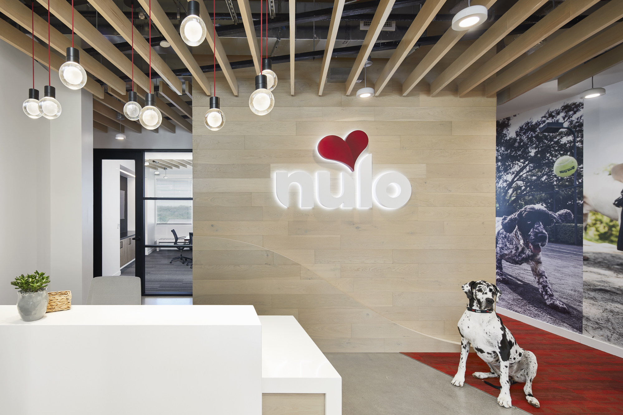 Nulo Corporate Office