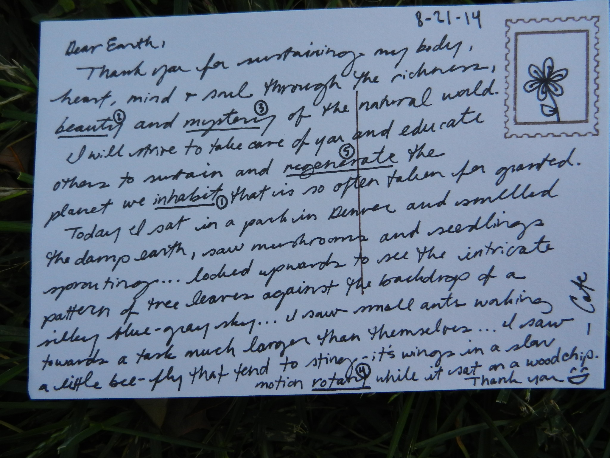 Postcard Photo Placecraft 16.JPG