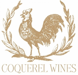 Coquerel Rooster.jpg