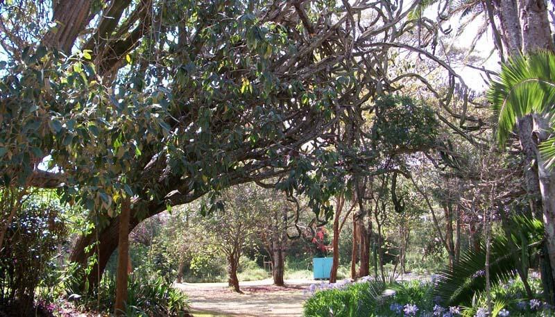 Karen Blixen Museum Garden