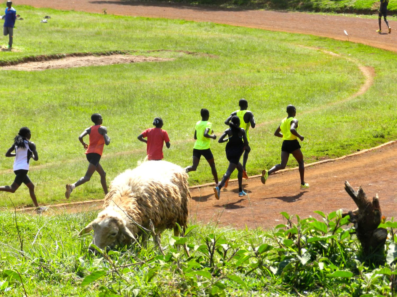 Kenyan Running Culture Event in Oakland - April 21st .jpeg