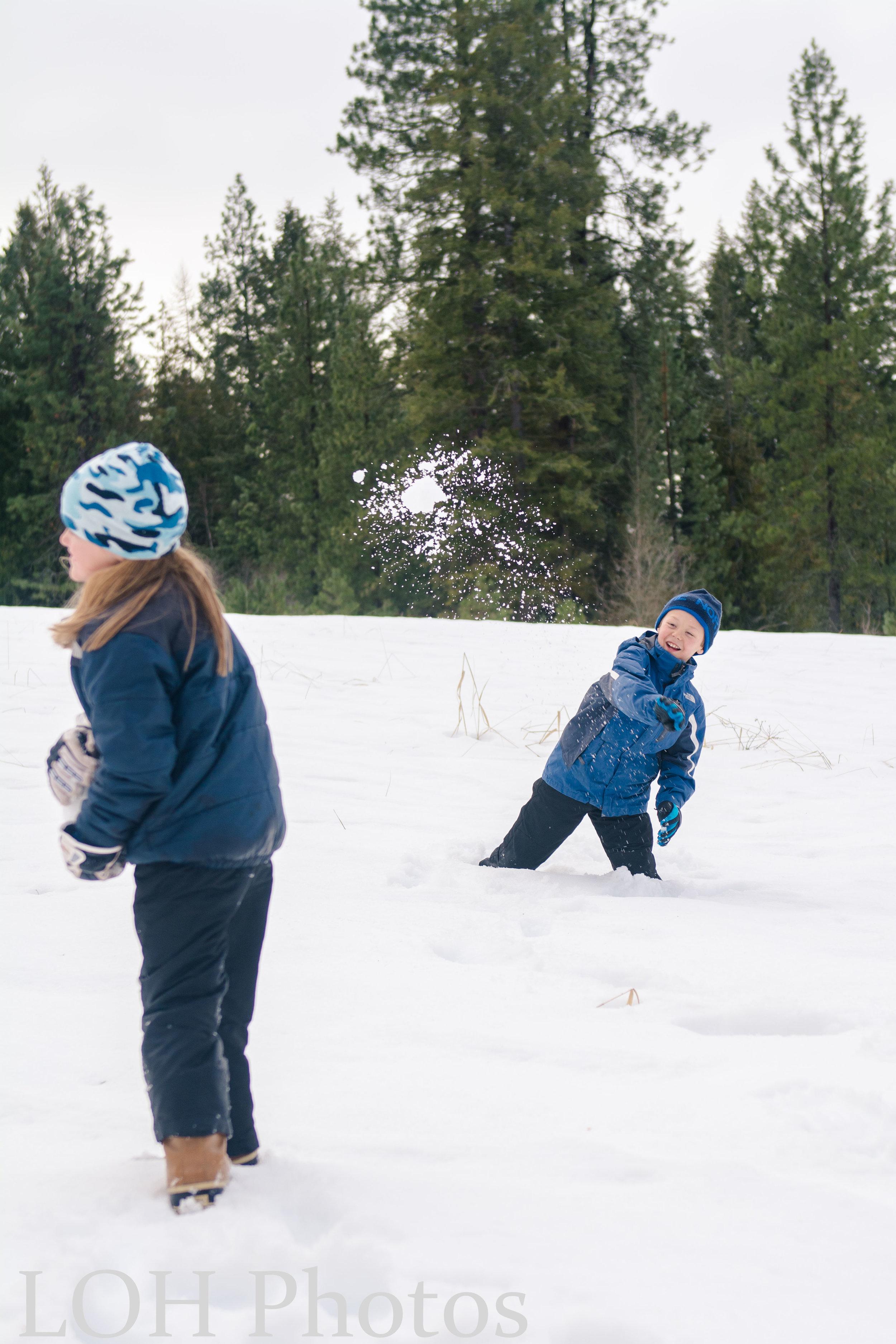 snowball fight 2.17 (4 of 6).jpg