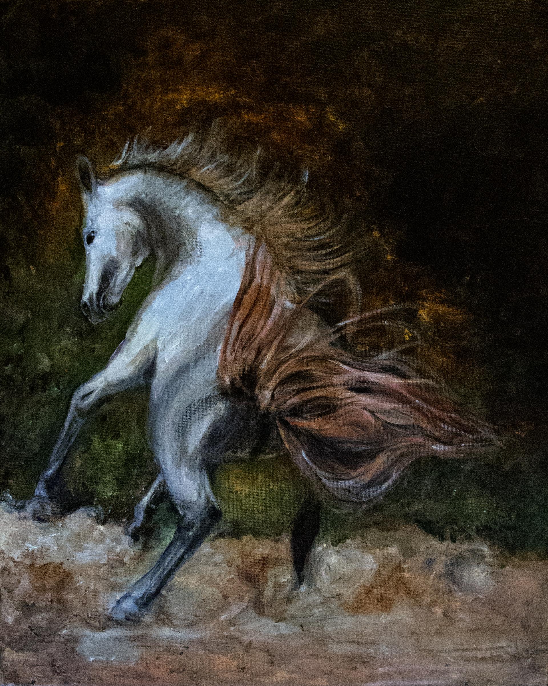 my-horse2w.jpg