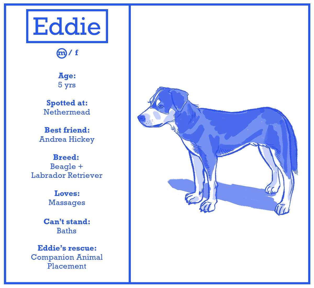 eddie.png