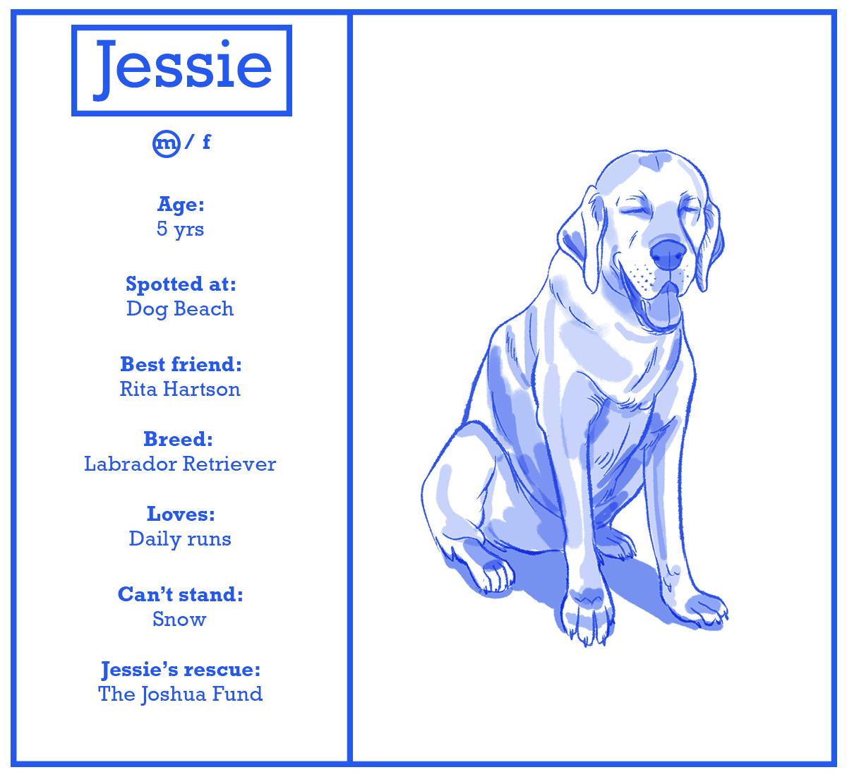 jessie.png