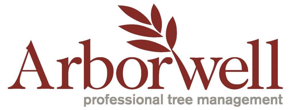 Redwood1-1024x384.jpg