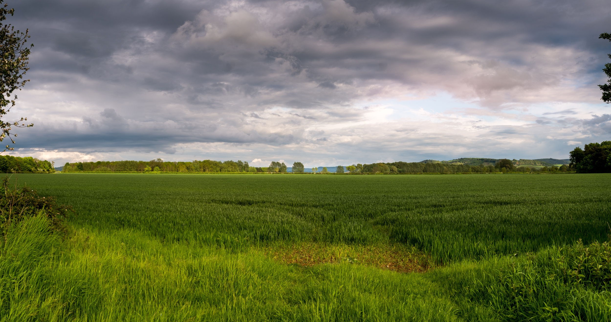 Today's image is a landscape from Gloucestershire, UK.