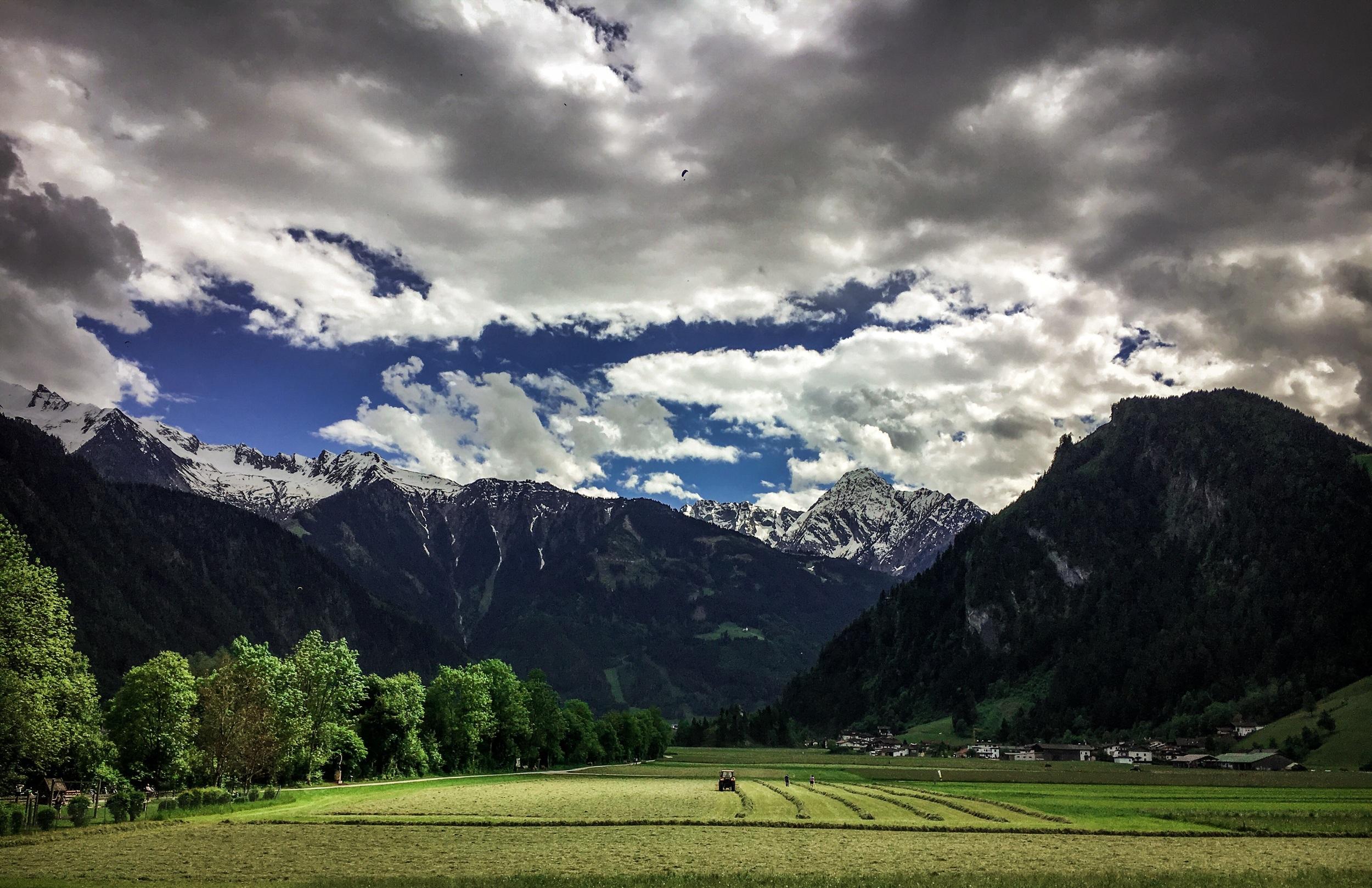 Ein Feld in Österreich