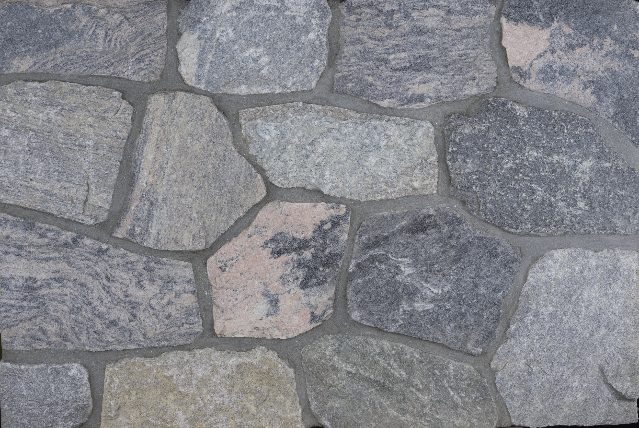 Catskill Coral Mosaic.jpg