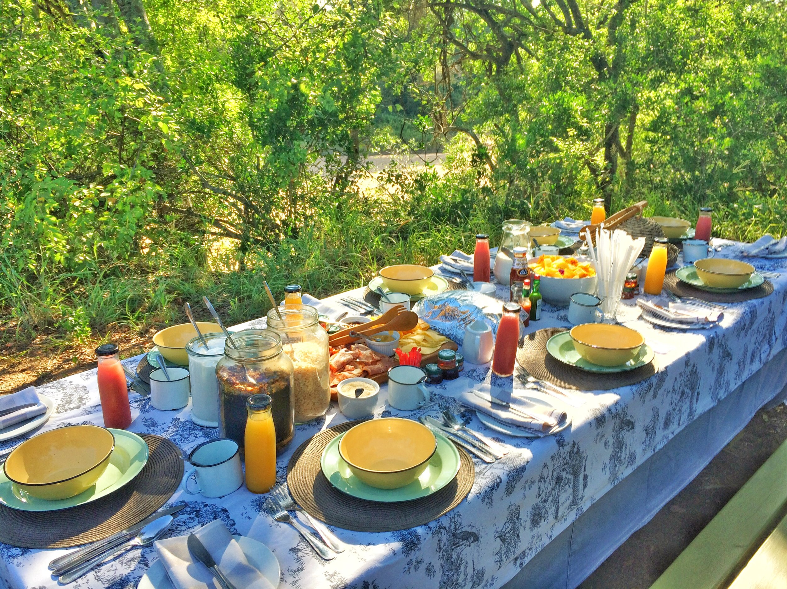 On one of the mornings, we were surprised with an incredible breakfast setup in the middle of the safari.