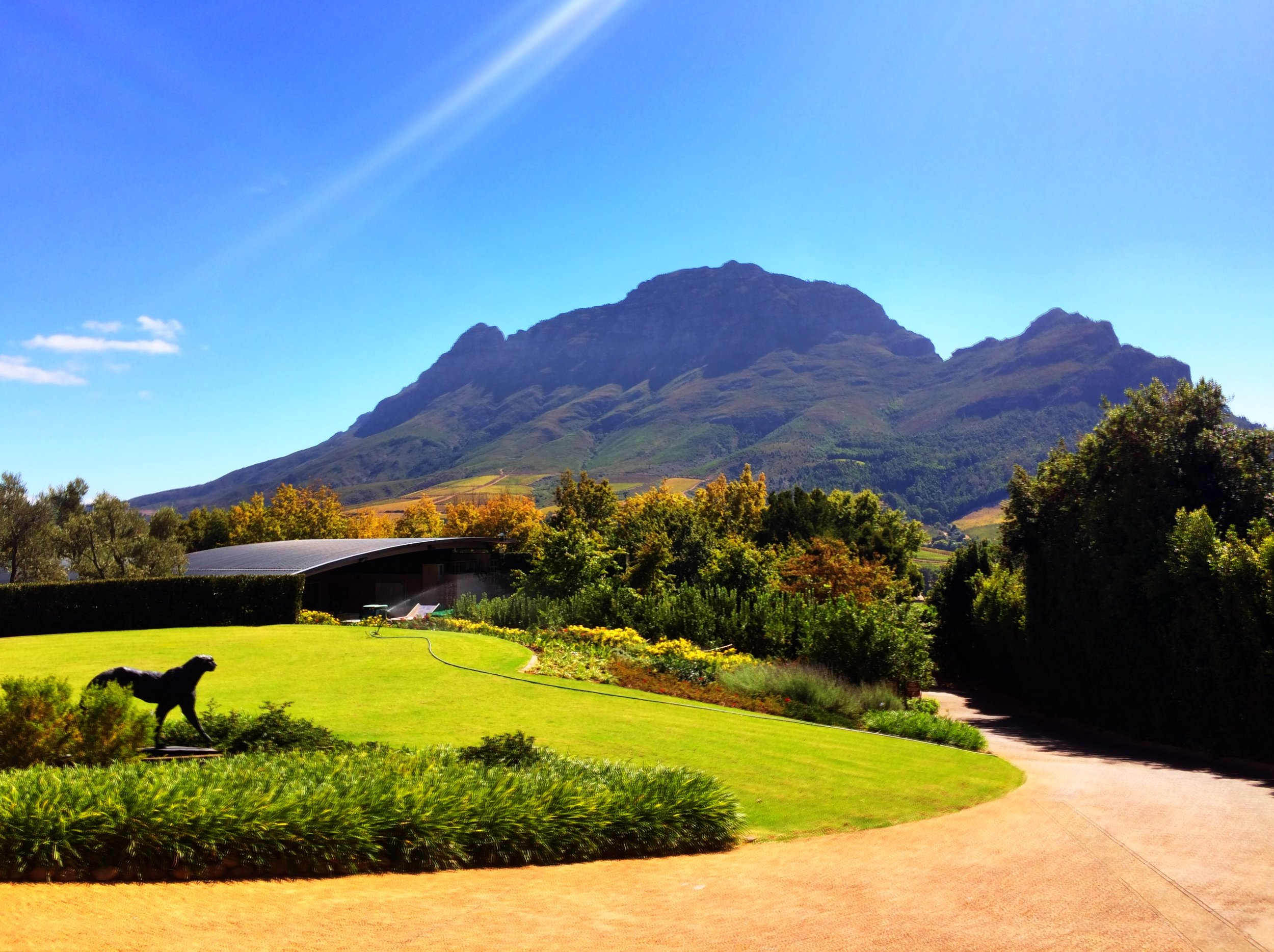 Delaire Graff Estate, a winery and boutique hotel near Cape Town. Beautify but, yeesh - horrible customer service!