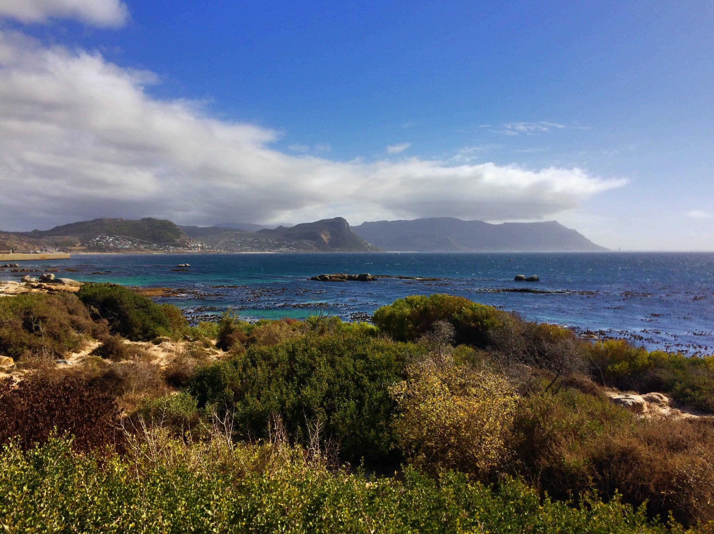 Boulder's Beach near Cape Town