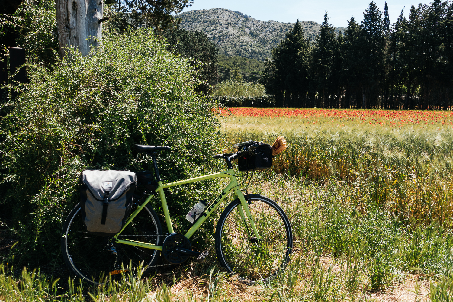 Wheat fields full of red poppies and a baguette, ready to ride!